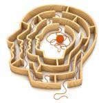 adhd volwassenen Progressive Mental Alignment