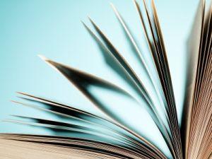 adhd bij volwassenen boek